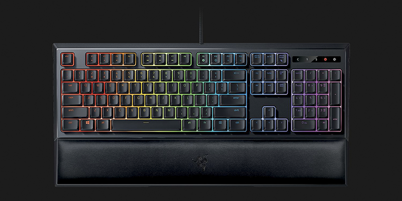 razer ornata chroma top view